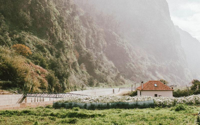 Madera– wyspa ze snów